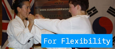 About DAN Taekwondo School Flexibility