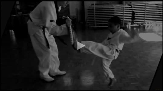 YouTube Link DAN Taekwondo School
